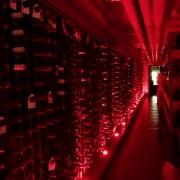wine_school_cheshire_chester_grosvenor_wine_cellar_2
